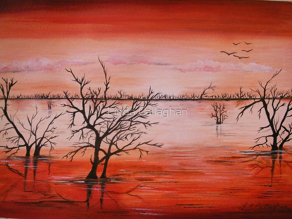 Wetlands  by Linda Callaghan