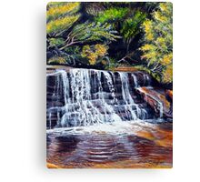 Cascades, Blue Mountains Canvas Print