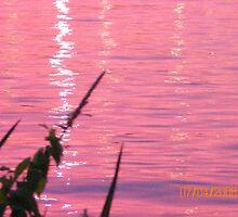 Orange Water by Gordon Sill