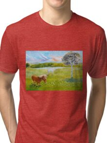 Serenity in the Field Tri-blend T-Shirt