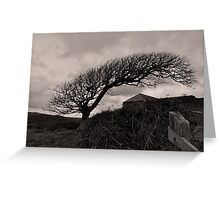 The Wind will blow & I shall be that measure Greeting Card