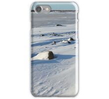 Early Morning on the Tundra, Churchill, Canada iPhone Case/Skin