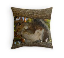 Mrs Squirrel!! Throw Pillow