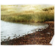 Rippled Water, Rippled Reeds Poster