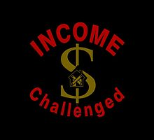I Am Income Challenged by Vy Solomatenko