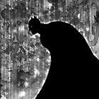 The Dark Knight by SamMcGorry