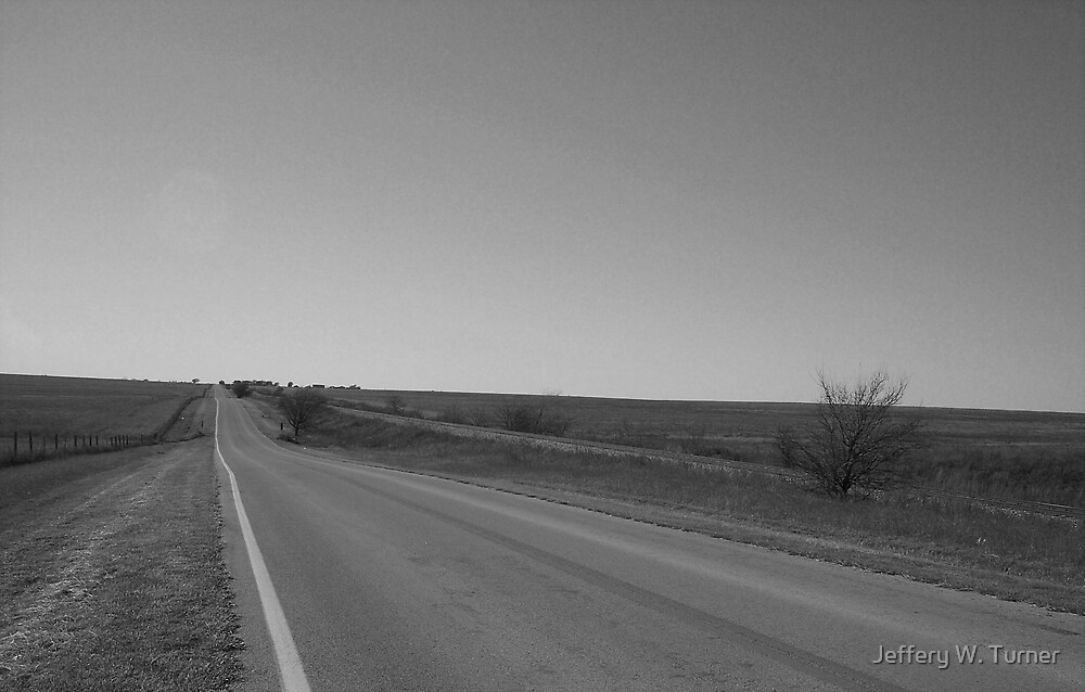 The Road In The Pasture by Jeffery W. Turner