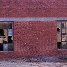 Broken Windows in Turkey, Texas by Susan Russell