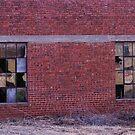 Broken Windows in Turkey, Texas by Susan Russell