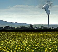 Smokestack landscape in watercolour by buttonpresser