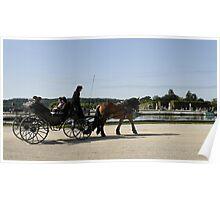 Horse buggy at Versailles Poster