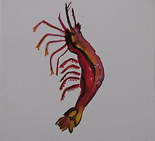 shrimp who sleep are swept away by the current  by sasparilla