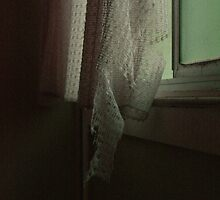 delicate #2 by ameliadowd