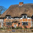 Tudor thatch by relayer51