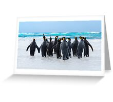 King Penguins Greeting Card
