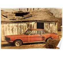 Mustang Dreaming Poster