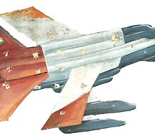Red Tail Fighter Jet India Wall Mural by rooosterboy