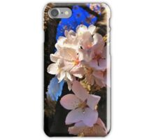 Sakura blossoms iPhone Case/Skin
