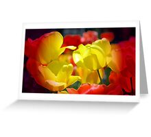 Red And Yellow Tulips Greeting Card