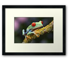 The climber Framed Print