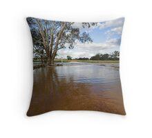 Flooding - Macaulays Lane, Junee Reefs Throw Pillow