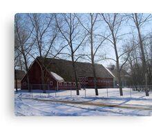 snowy village Metal Print