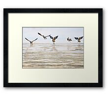Winter Geese 2 Framed Print