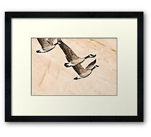 Geese & Canyon Wall Framed Print