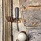 Loose Security by Kim Barton