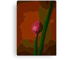 chive bud  Canvas Print