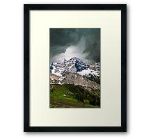699 Framed Print