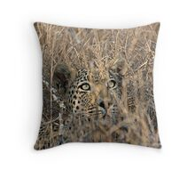 I Can See You, But You Can't See Me Throw Pillow