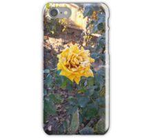 Frozen Love iPhone Case/Skin