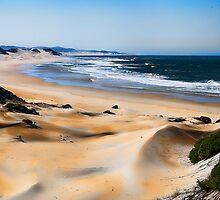Dune Shades by Warren. A. Williams