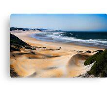 Dune Shades Canvas Print