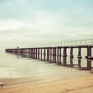 The Whole Pier, Dromana by Shari Mattox