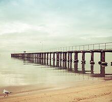 The Whole Pier, Dromana by Shari Mattox-Sherriff