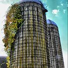 Silo Standing ( 2 ) by Larry Davis