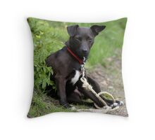 If Looks Could Kill.... Throw Pillow