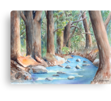 Creek In The Woods Canvas Print