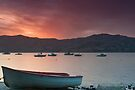 Akaroa Sunset by Werner Padarin