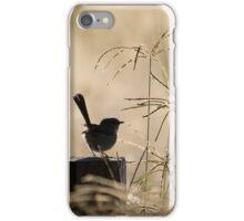 Fairy-wren Watching the Sunrise iPhone Case/Skin