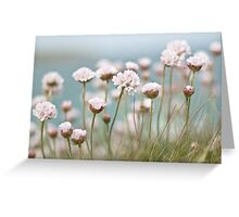 St. Ives Thrift Textured Greeting Card
