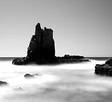 Cathedral Rocks by Tatiana R