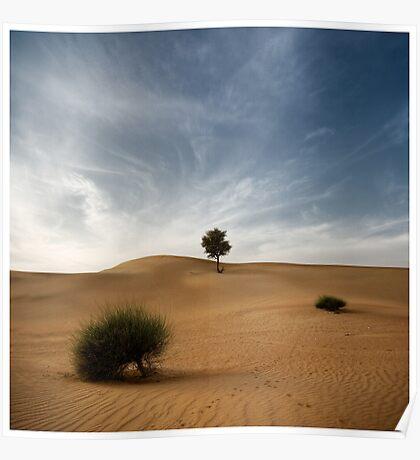 Desert Poetry I - UAE, Dubai Poster