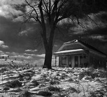 Winter Porch by Rodney  Harvey