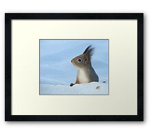 Always Alert Framed Print