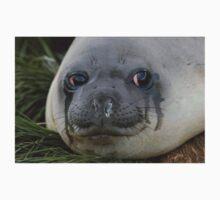 Crying Seal T-Shirt