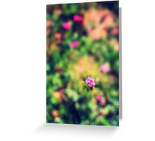 Little pink flower Greeting Card