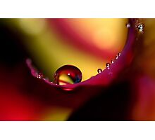 Rainbow Drops Photographic Print